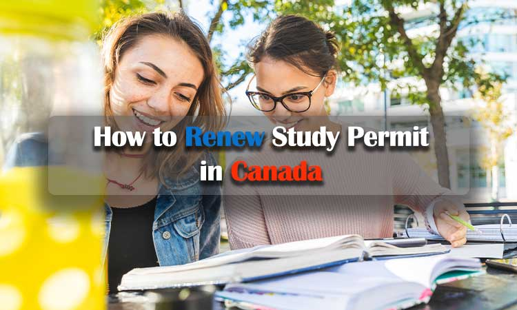 How to Renew Study Permit in Canada