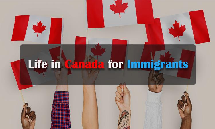 加拿大移民生活