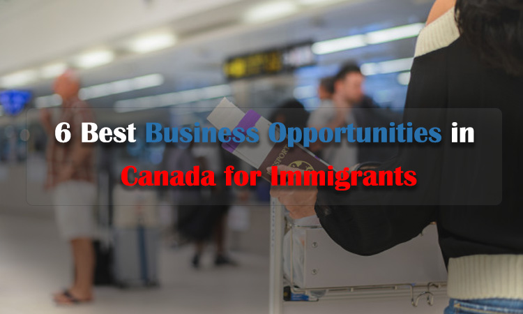 6 Best Business Opportunities in Canada for Immigrants